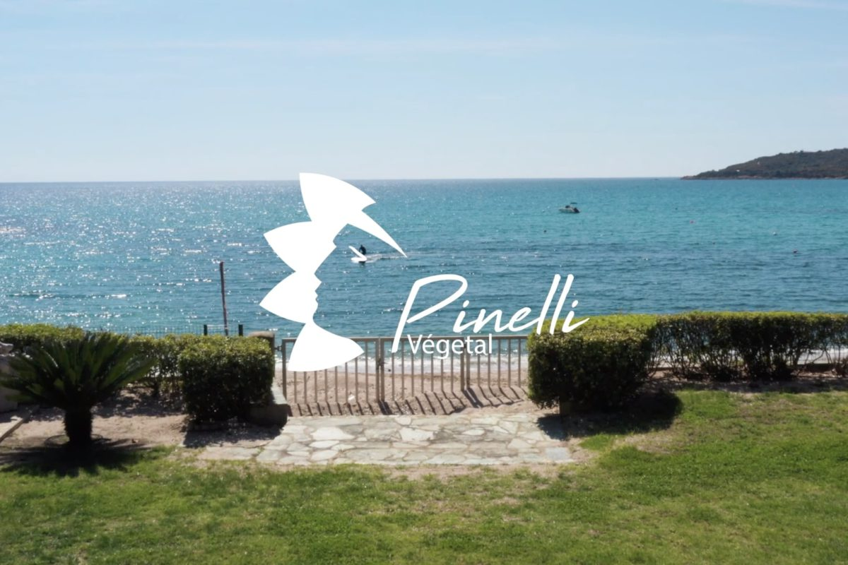 Groupe Pinelli – Teaser